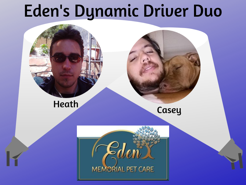 Eden Memorial Pet Care's Dynamic Driving Duo | SLO Horse News