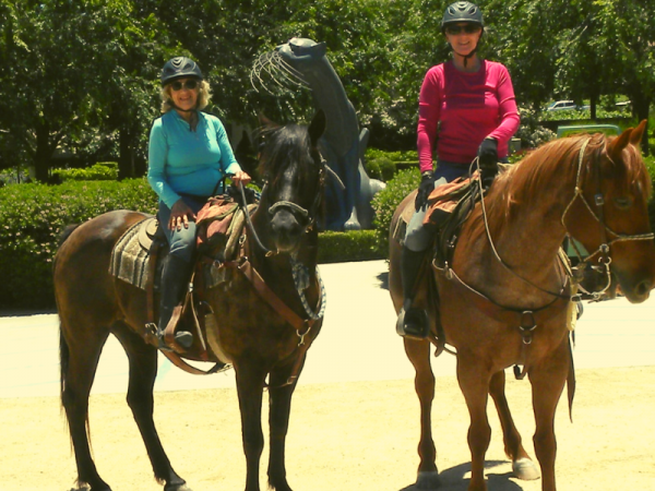 Riding from Cass Winery to Sculpterra Winery : Riding the SLO County Trails | SLO Horse News