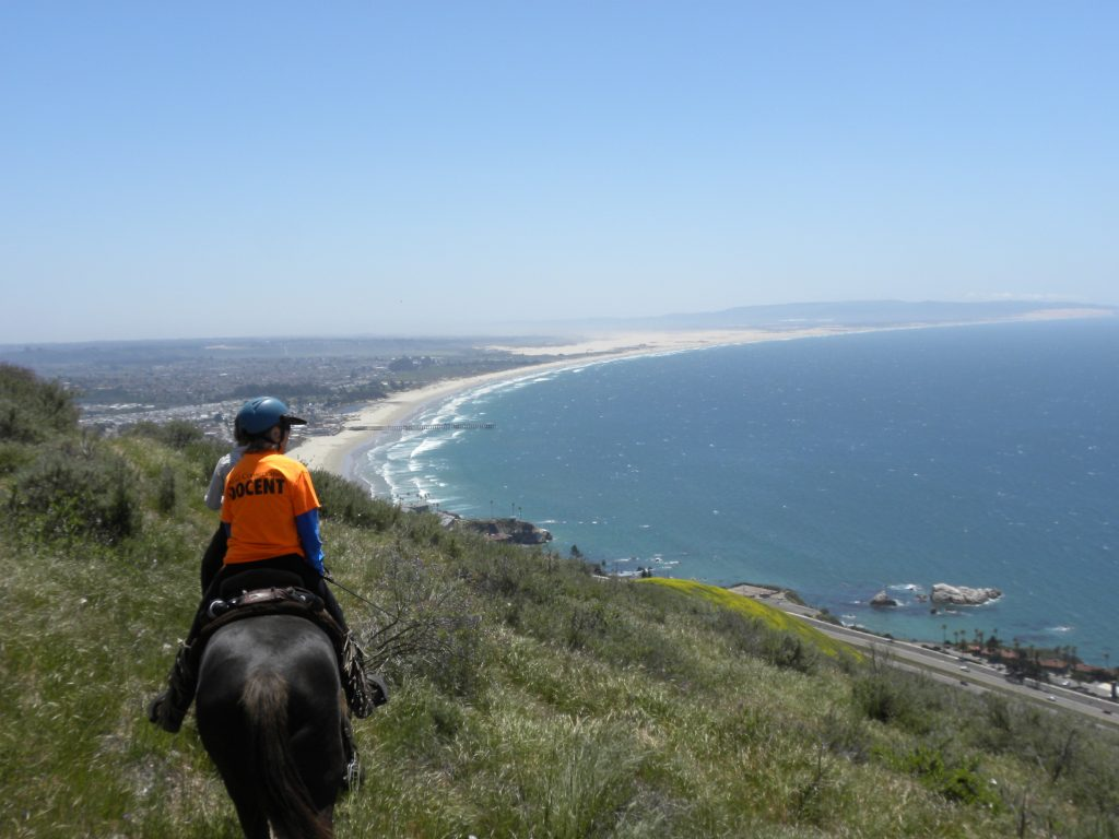 When is the Pismo Preserve Going to Open?  | SLO Horse News