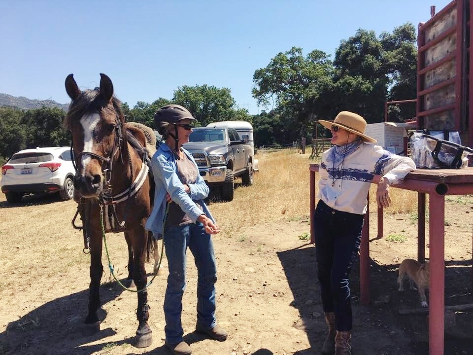 Learning About and Loving Long Distance Riding    SLO Horse News