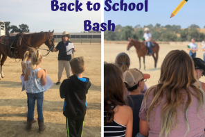 Back to School Bash – Free Education and Fun for Horse Lovers of All Levels