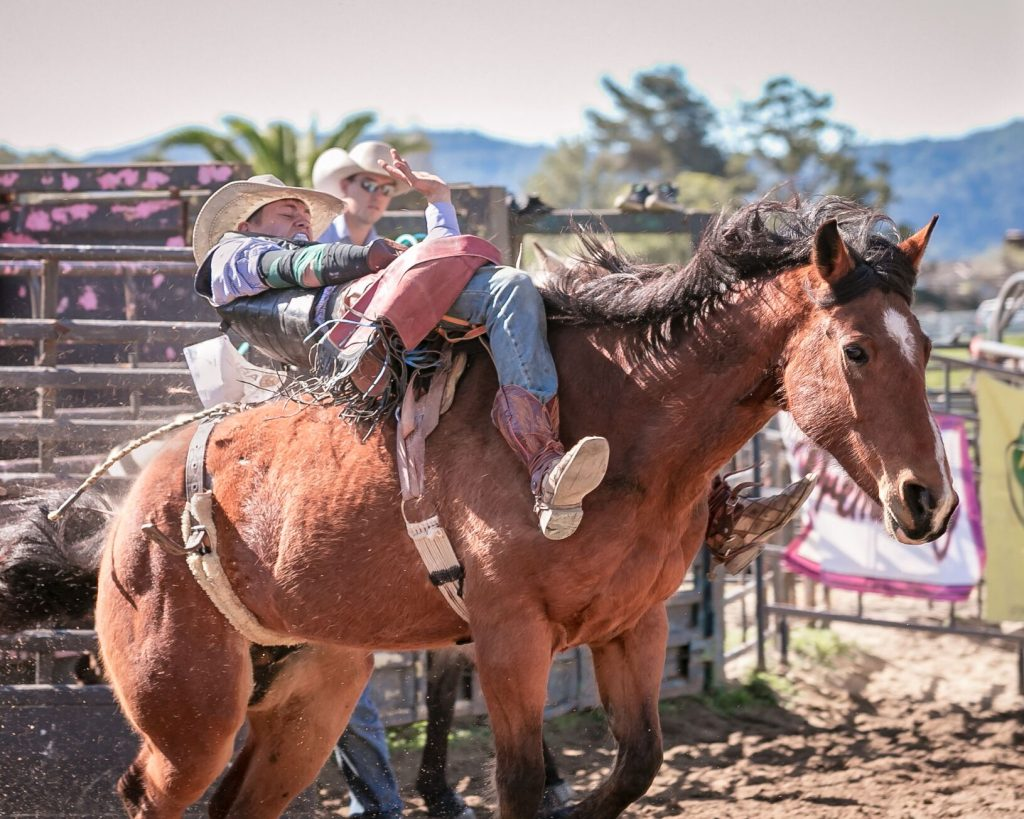 Local Teen Rodeo Stars Competing at the National High School Finals Rodeo 2019  | SLO Horse News