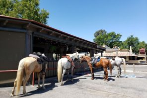 Ride and Dine Trail Ride The New Cowboy Way : Riding the SLO County Trails