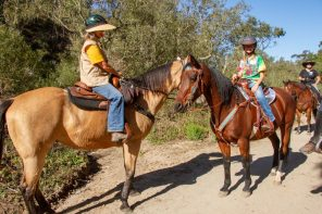 Horse Camping and Fun for Everyone at Montaña de Oro State Park
