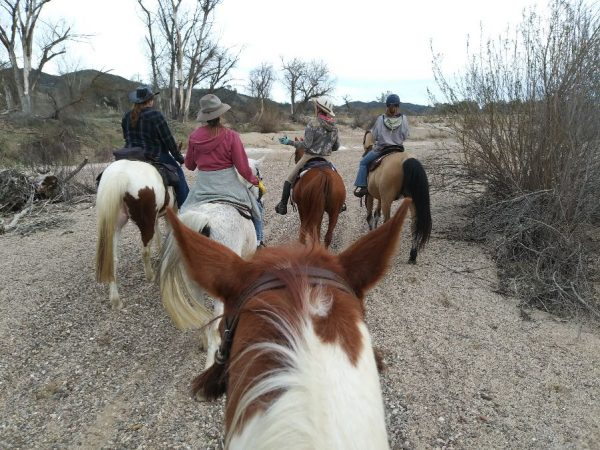 A Long Ride through History in the Salinas Riverbed : Riding the SLO County Trails | SLO Horse News