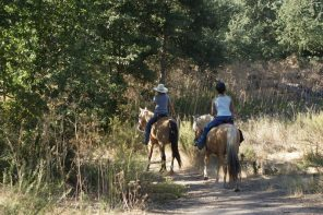 Horse Camping near Santa Margarita Lake Coming Soon!