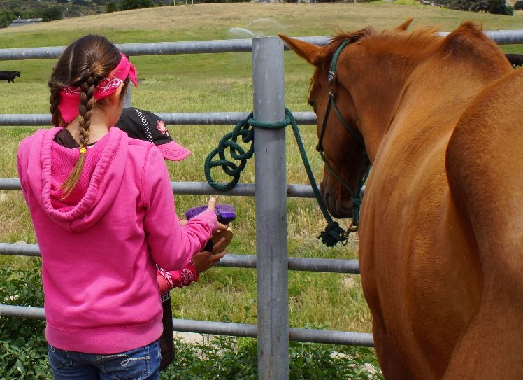 Common Mistakes Horsemen Make Tying Up and Leading a Horse | SLO Horse News