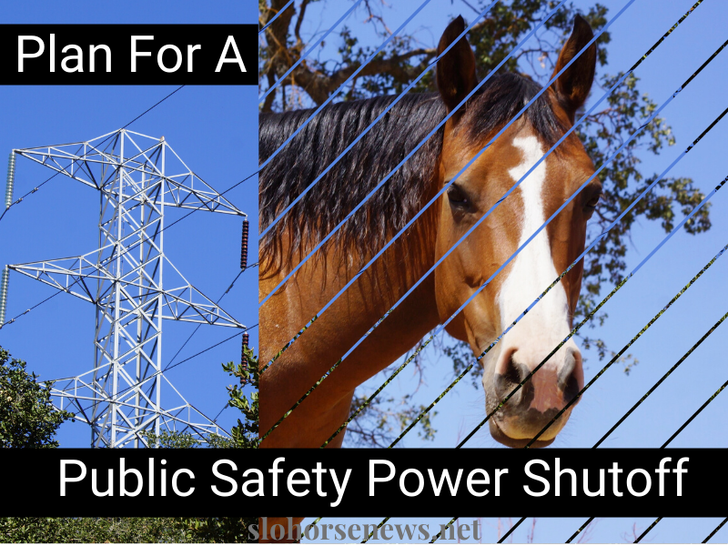 Human and Horse Survival Plan for a Power Shutoff | SLOHorse News