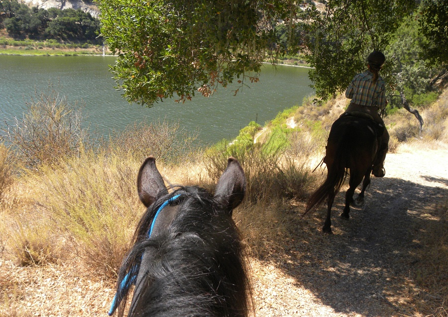 Horse Trail Rides at Lopez Lake : Riding the SLO County Trails  | SLO Horse News