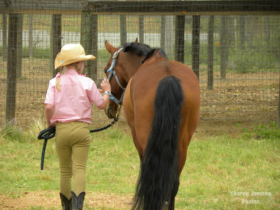 5 Horsemanship Habits Every Equestrian Should Develop | SLO Horse News