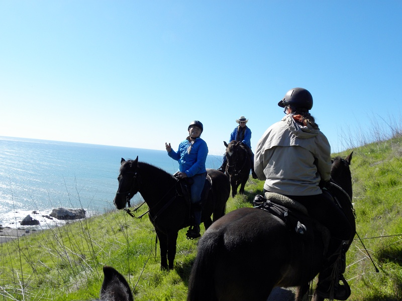 Taking Advantage of Horse Trailer Tuesday at the Pismo Preserve  | SLO Horse News