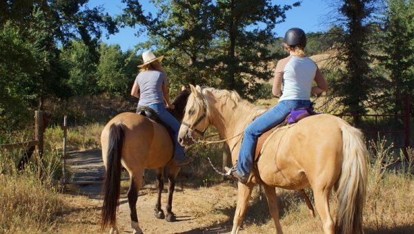 Developing the Horse Camp at Santa Margarita Lake Hits a Little Snag | SLO Horse News