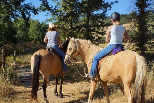 Developing the Horse Camp at Santa Margarita Lake Hits a Little Snag | SLO Horse News