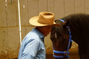 The Power of Breathing Your Horse to Calmness