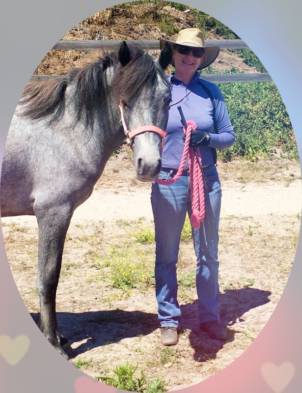 Enjoy Connecting with Your Horse Without Adding Another Training Routine | SLO Horse News