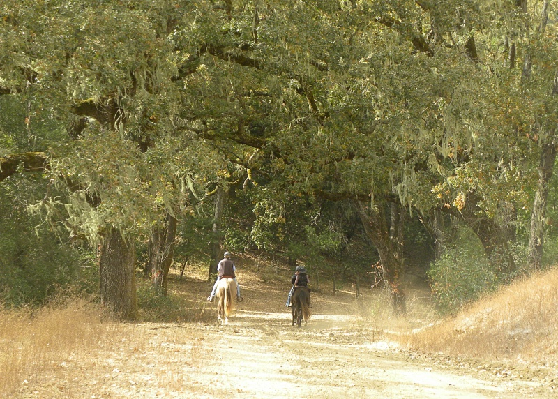 Equestrians Explore the Stunning Ranching Landscape of Santa Rita Ranch  | SLO Horse News