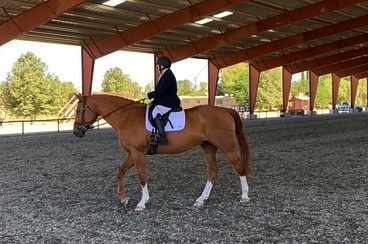 Too Old to Ride a Horse? Nope. Two Local Dressage Riders Join the Century Club