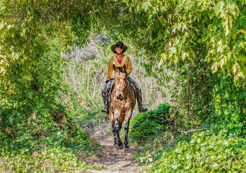 Monthly Trail ChallengeBuild Confidence in Horse and Rider  | SLO Horse News
