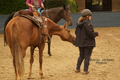 Bridleless Clinic September 2020