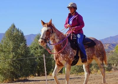 Poseidon's Horse Archers Track Practice November 2020